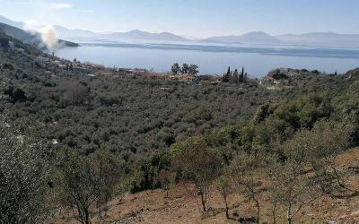 Land plot with sea view in Lefokastro